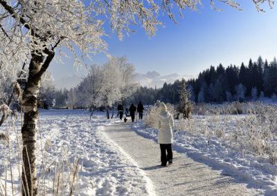 seefeld_winter_wandern